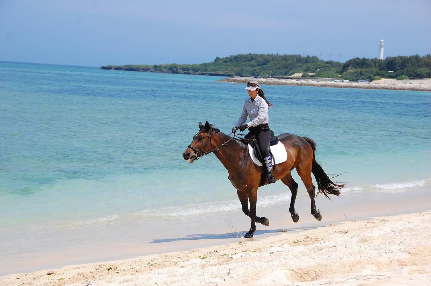 沖縄乗馬クラブ